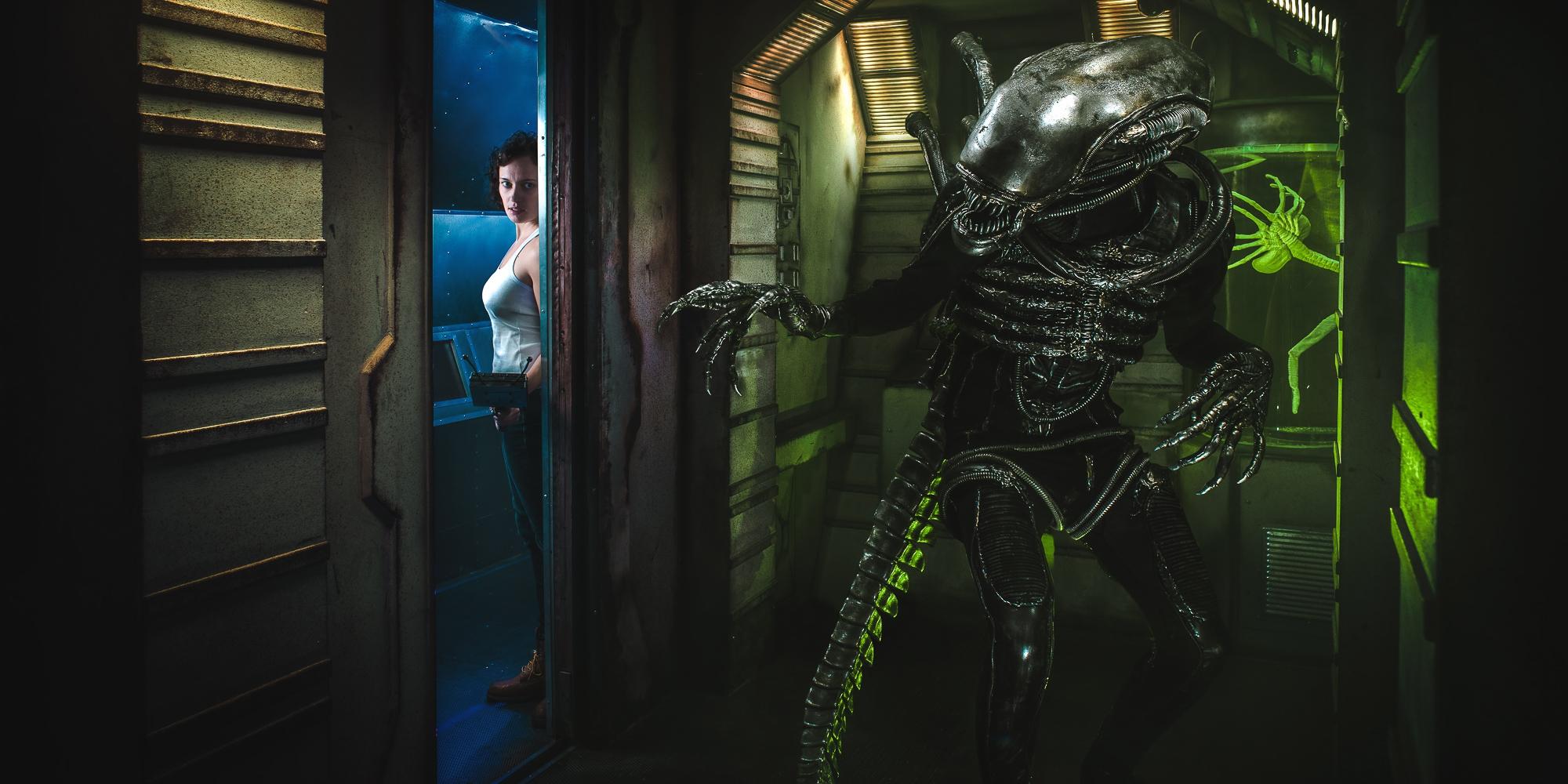 Фотография квеста «Alien»